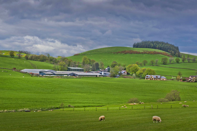 Farming Photographer - Photography Agency for Farming